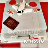 ტორტი თვითმფრინავი 9239