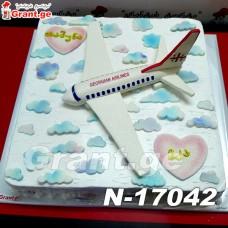 კორპორატიული ტორტი თვითმფრინავი 17042