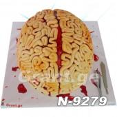 ტორტი ტვინი 9279