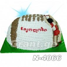 რაგბი 4066